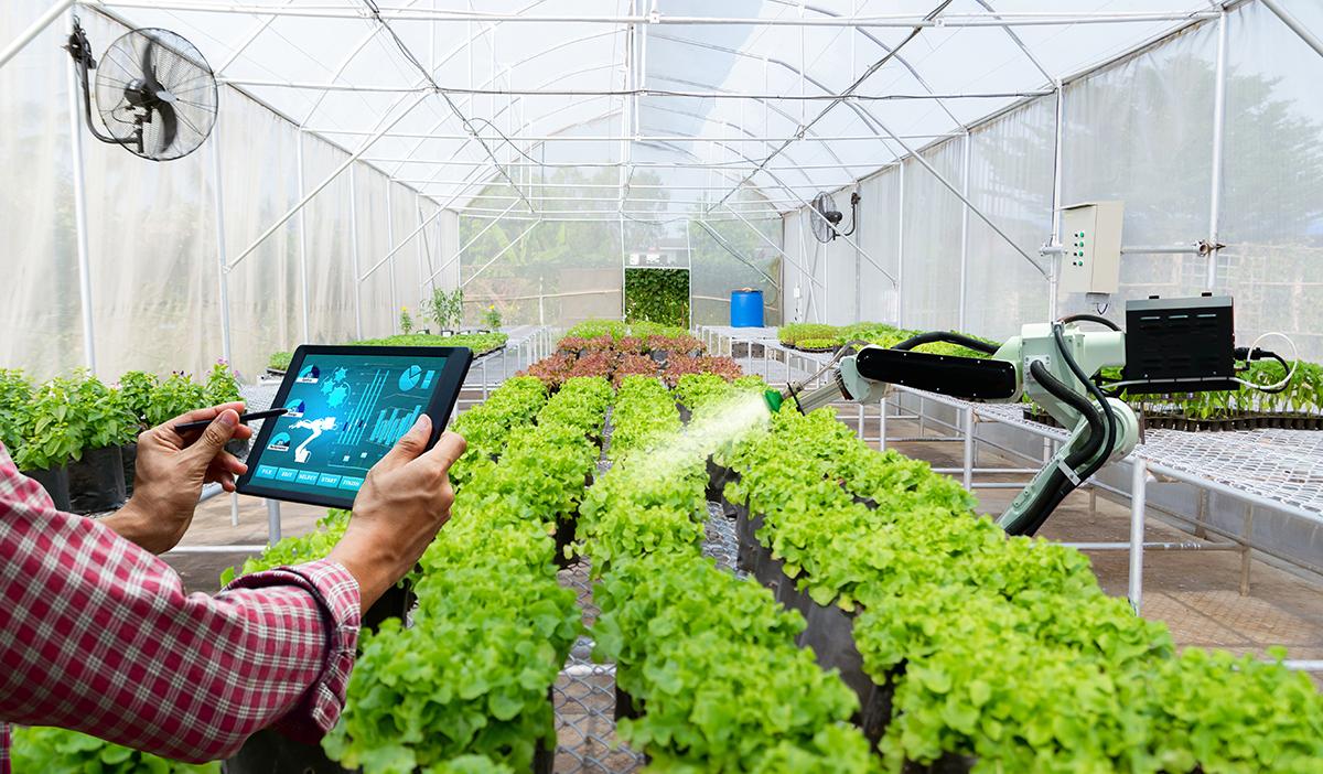 สร้างคุณภาพชีวิต สร้างรายได้มั่นคงด้วยนวัตกรรมการเกษตรสมัยใหม่