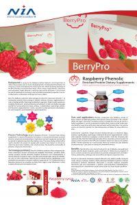 Berry Pro v1-01